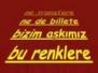 Galatasaray Tarftarları İçin Tezahuratlar